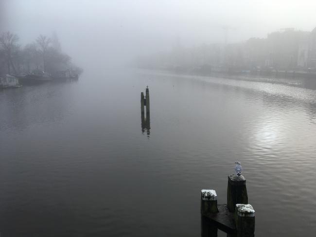 De Amstel in mist